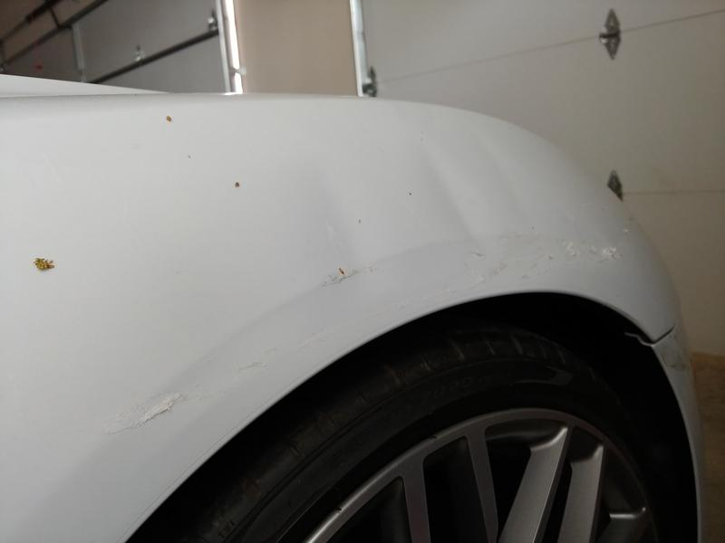 Victim of a Hit and Run in Parking Lot-nvfa0zl.jpg